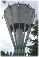 Structural Appraisal of Water Tower